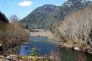 Salmon Rivers. Drive to Ocean Mist Guesthouse B&B, Highway 4, Ucluelet, BC