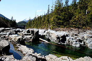 Rock Pools. Drive to Ocean Mist Guesthouse, Highway 4, Ucluelet, BC