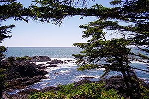 Open Pacific Ocean Views, Wild Pacific Trail, Ocean Mist Guesthouse, Ucluelet, BC
